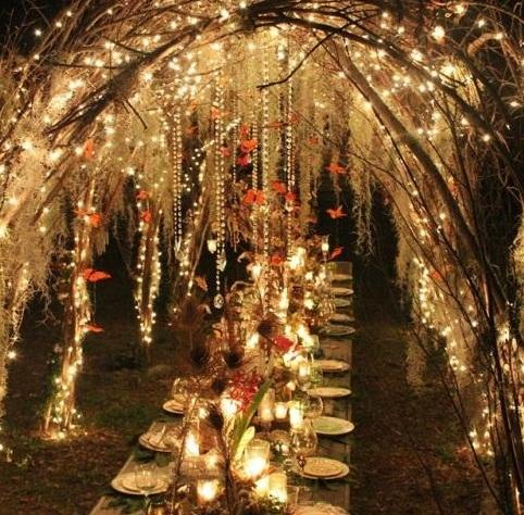 boda en jardin noche