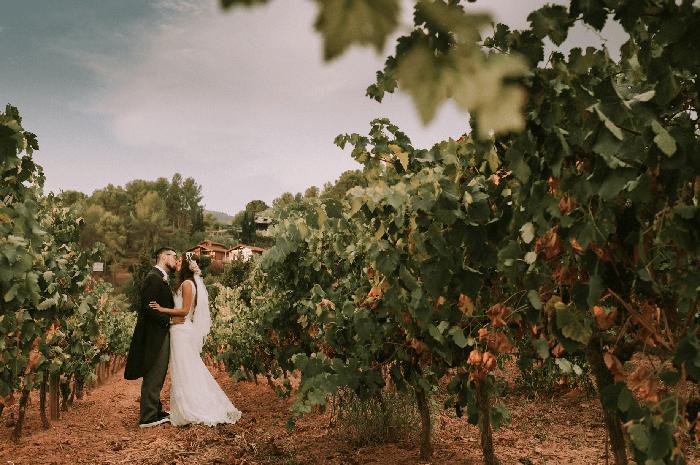 Consejos para bodas en viñedos